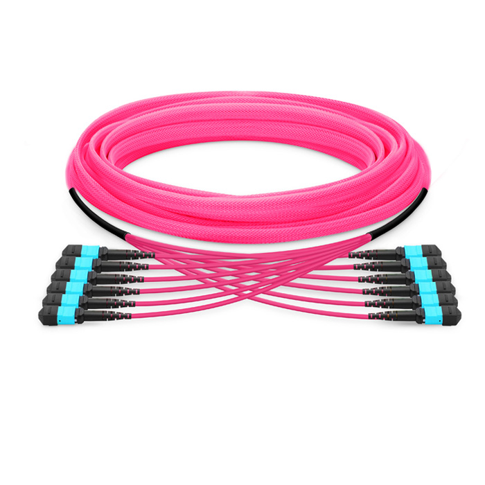 MTP Female to MTP Female 72 Fibers OM4 50/125 Multimode Trunk Cable, Type B, Elite, LSZH Bunch